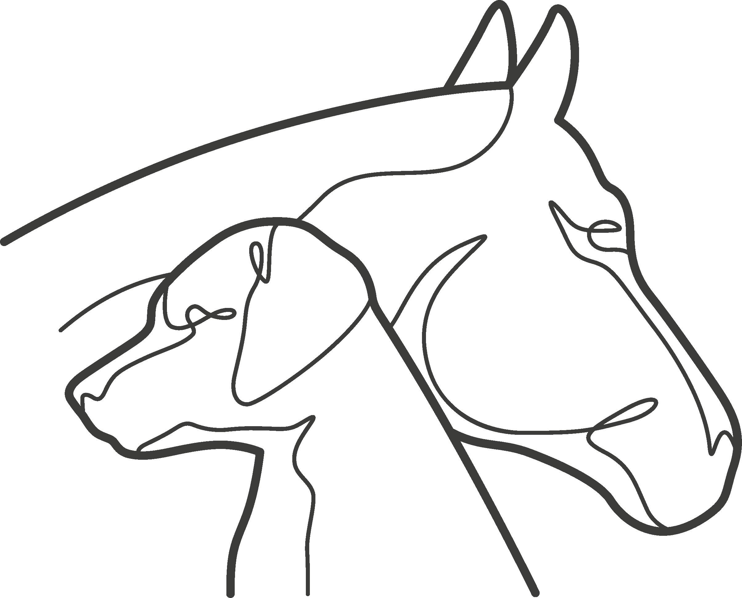 Nadine Tuchlinski Tierphysiotherapie Logo